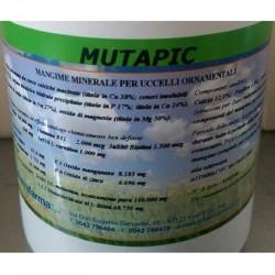 MUTAPIC 200 GR