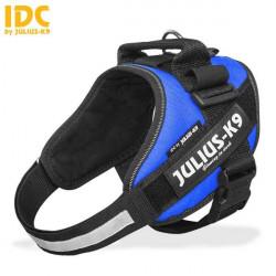 JULIUS IDC POWER HARNESSES BLUE TG MINI