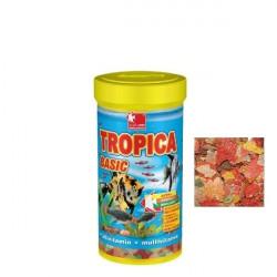 TROPICA BASIC DAJANA 250 ML 50 GR