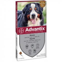 ADVANTIX SPOT ON CANI 40-60 KG