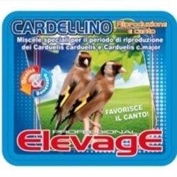 ELEVAGE CARDILL RIPRODUZIONE E CANTO 5 KG