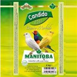 PATEE CANDIDO BIANCO MORBIDO 3 KG