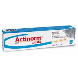ACTINORM PASTA GATTI GR 65