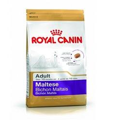 ROYAL CANIN MALTESE ADULT GR 500