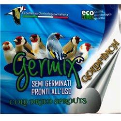 GERMIX CARDELLINI EVOLUTION DRY  MUTA 1 KG