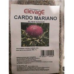 SEME DI CARDO MARIANO 1 KG ELEVAGE