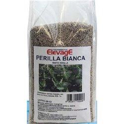 SEME DI PERILLA BIANCA 1 KG ELEVAGE