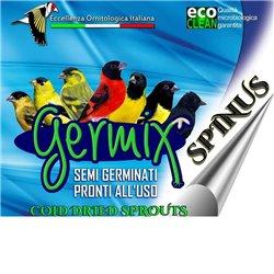 GERMIX SPINUS  KG 4