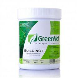 BUILDING I 50 GR